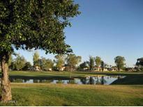 View 7813 E San Carlos Rd Scottsdale AZ