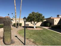 View 10916 W Coggins Dr Sun City AZ