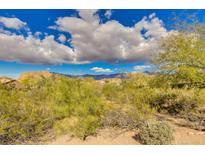 View 7881 E Jojoba Cir Gold Canyon AZ