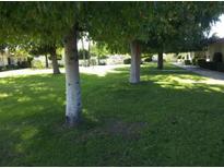 View 13422 N Emberwood Dr Sun City AZ