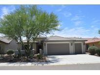 View 26247 W Lone Cactus Dr Buckeye AZ