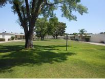 View 10517 W Palmeras Dr Sun City AZ
