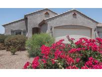 View 18428 N Ibis Way Maricopa AZ