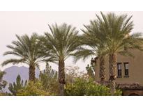 View 4777 S Fulton Ranch Blvd # 2128 Chandler AZ