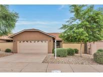 View 5008 E Shomi St Phoenix AZ