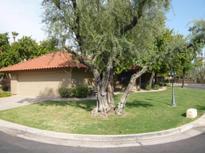 View 8700 E Mountain View Rd # 1019 Scottsdale AZ