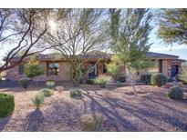View 15039 E Desert Vista Ct Scottsdale AZ