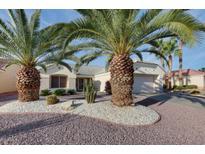 View 13019 W Caraway Dr Sun City West AZ